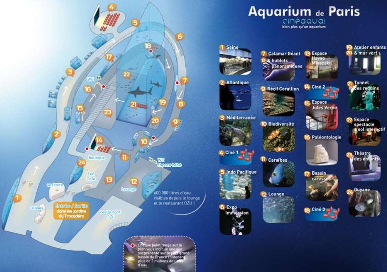 Biologie partenariat ffessm et aquarium de paris for Aquarium de paris jardin du trocadero